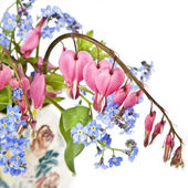Bleeding Heart Bouquet — Stock Photo