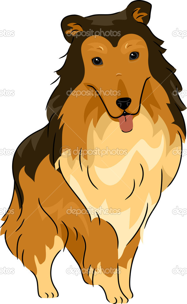 Illustration Featuring a Collie — Stock Photo #11128998