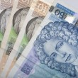 Croatian money - the Kuna — Stock Photo