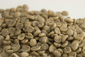 Unroasted coffee beans — Stock Photo