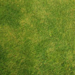 Patch of Grass — Stock Photo