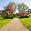 Stock Photo: Garden in spring