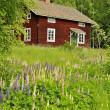 Foto Stock: Rural cottage