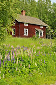 Rural cottage — Stock Photo