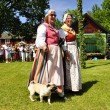 Folklore ensemble of Sweden — Stock Photo #11401776