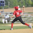 Little league baseball pitcher - Photo