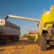 Modern combine harvester unloading grain into the trucks trailer on sunny summer day — Stock Photo #11437171