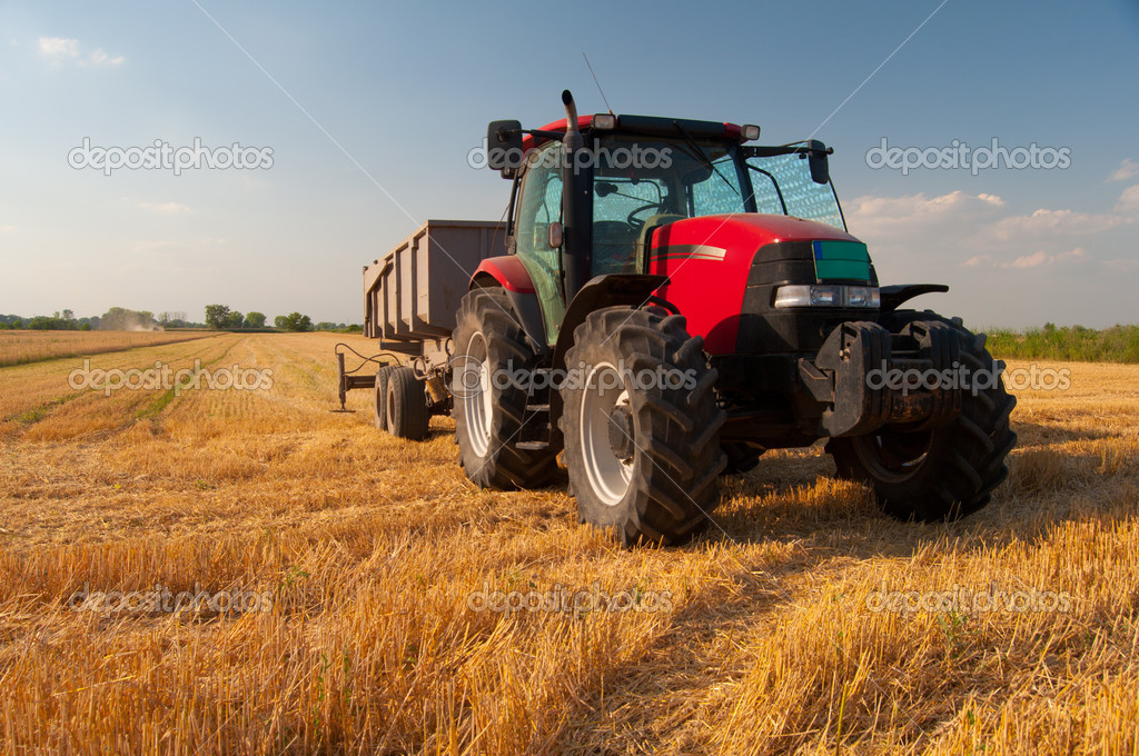 Modern red tractor on the agricultural field on sunny summer day — Stock Photo #11437270