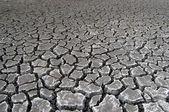Sprucken jord under torkan — Stockfoto