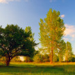 Landscape painting showing trees and the meadow on beautiful autumn day — Stock Photo #12310563