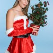 Christmas Woman — Stock Photo #11384832