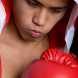 Young boxer — Stock Photo #11662409