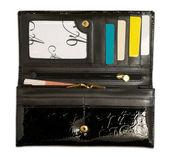 Opened purse — Fotografia Stock