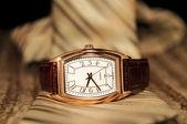 Golden Watch — Stock Photo
