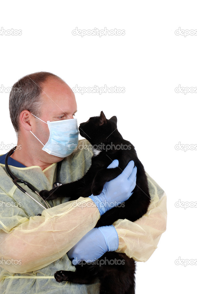 Isolated veterinarian with black cat — Stock Photo #10916068
