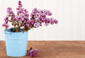 Purple lilac in a blue bucket — Stock Photo