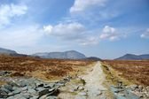 Straight path to Haystacks — Stock Photo