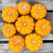 Decorative pumpkins — Stockfoto