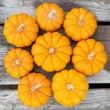 Decorative pumpkins — Stock Photo #11642944