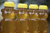 Row of Golden Honey Bears — Stock Photo