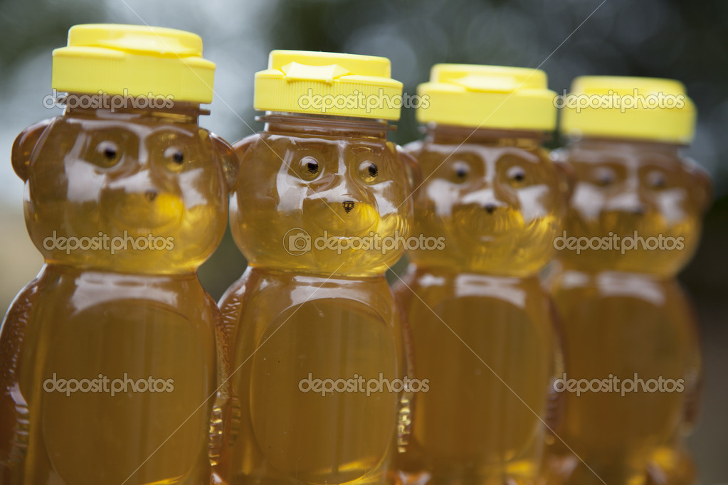Four raw, natural golden honey bears sit in a row outside in the sun. — Foto de Stock   #12089081