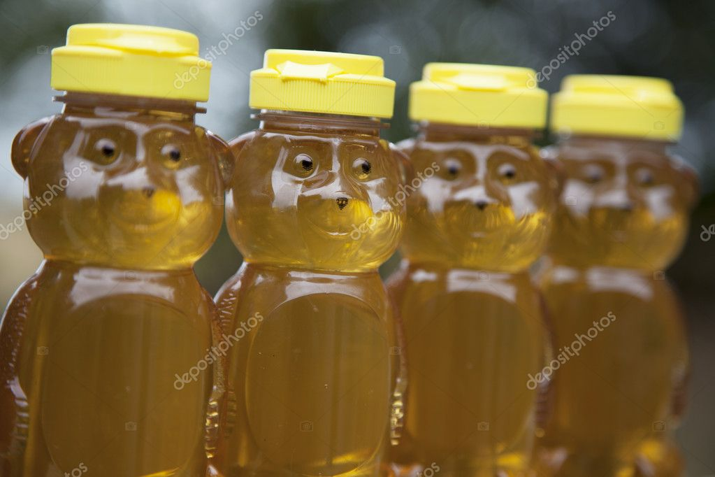 Four raw, natural golden honey bears sit in a row outside in the sun.  Photo #12089081