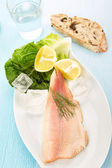Trout fillet — Stock Photo