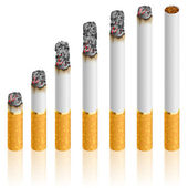 Set of Cigarettes — Stock Vector