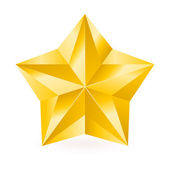 Shiny Gold Star — Stock Vector