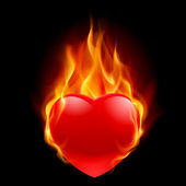 Burning Heart — Stock Vector