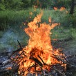 Wooden camp fire — Stock Photo #11647999