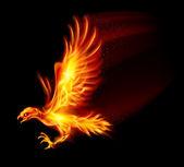 Flaming hawk — Stockvector