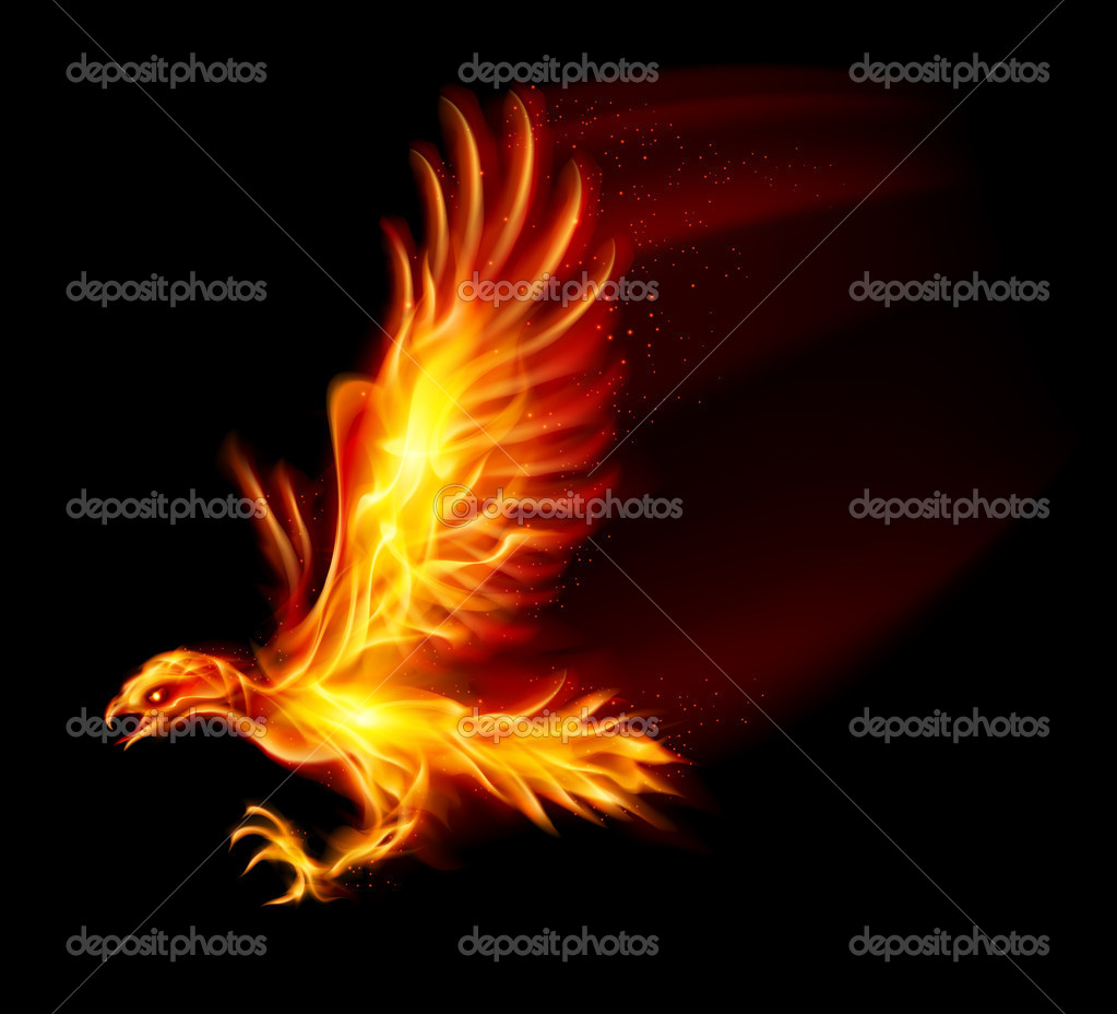 Flaming Hawk. Illustration on black background for design — Stock Vector #12238480