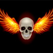 Skull with Fire Wings — Stock Vector