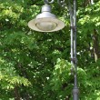 Royalty-Free Stock Photo: Stylish street lamp in the park