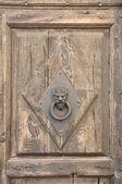 Stylish knocker on the door — Stock Photo
