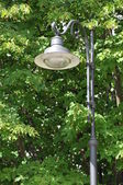 Stylowe lampy uliczne w parku — Zdjęcie stockowe