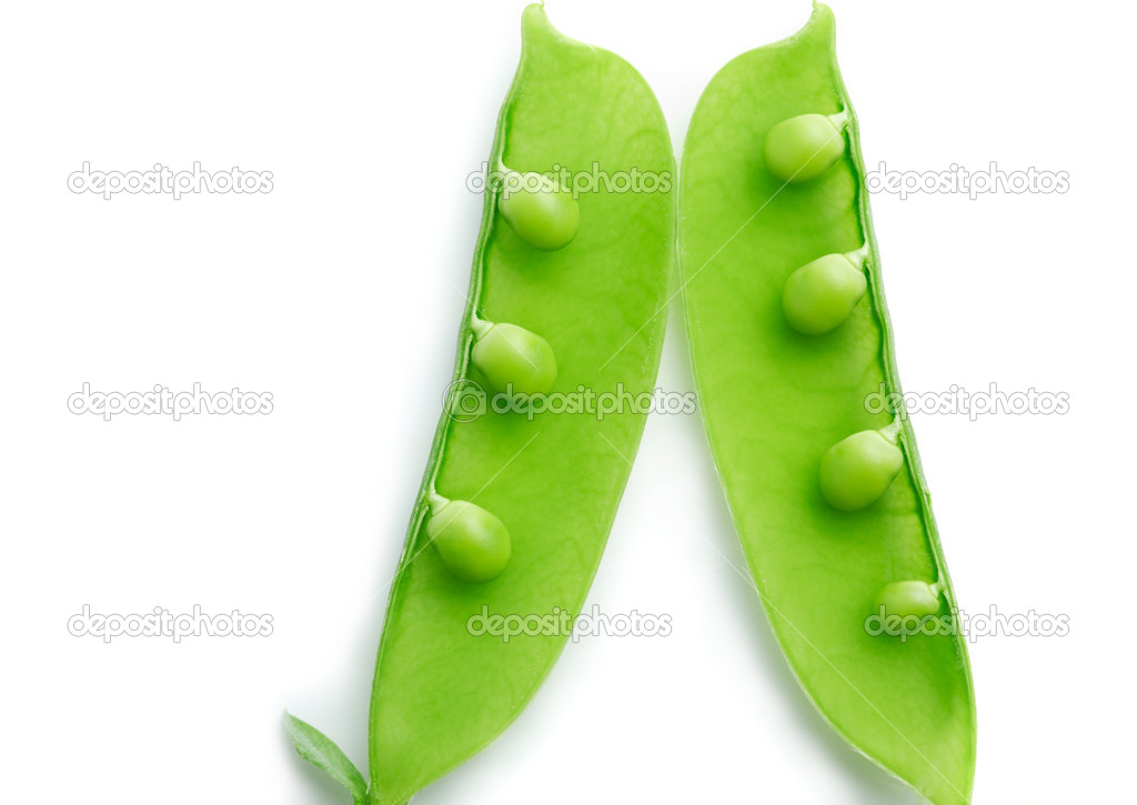 A close-up of a pea pod split open revealing peas on white background   #11311395