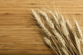 Wheat, — Stock Photo