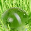 Environment concept, glass globe in the grass — Stock Photo