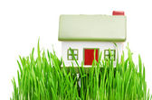 Cottage. New little cottage and green juicy grass. — Stock Photo