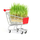 Shopping cart isolated on a white background — Stok fotoğraf