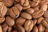 Fress coffee beans can use as background — Stock Photo