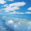 Caribbean sea and perfect sky — Stock Photo #11994390