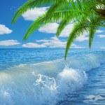 Caribbean sea and perfect sky — Stock Photo