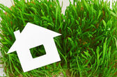 Concept de la maison verte — Photo