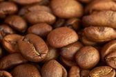 Granos de café fress — Foto de Stock