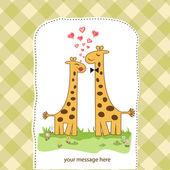 Coppia divertente giraffa in amore — Foto Stock