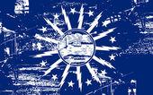 Buffalo City flag — Stock Photo
