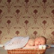 Beautiful newborn baby boy sleeping in a basket — Stock Photo